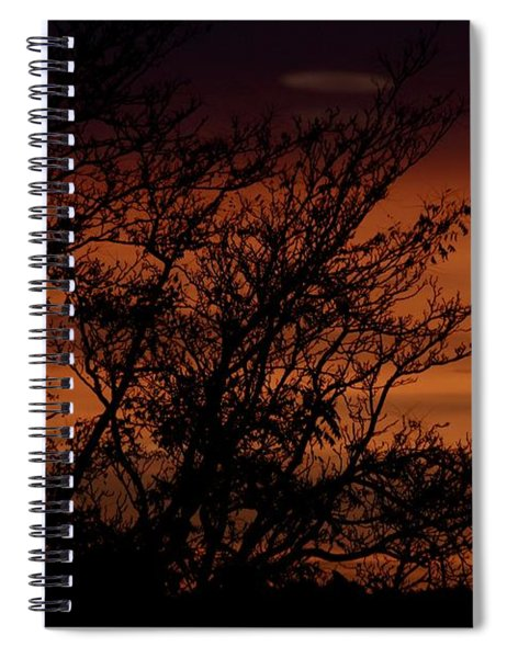 Orange Morning Spiral Notebook