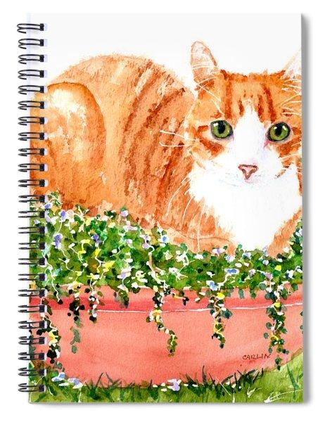 Orange Tabby Cat In Flower Pot Spiral Notebook