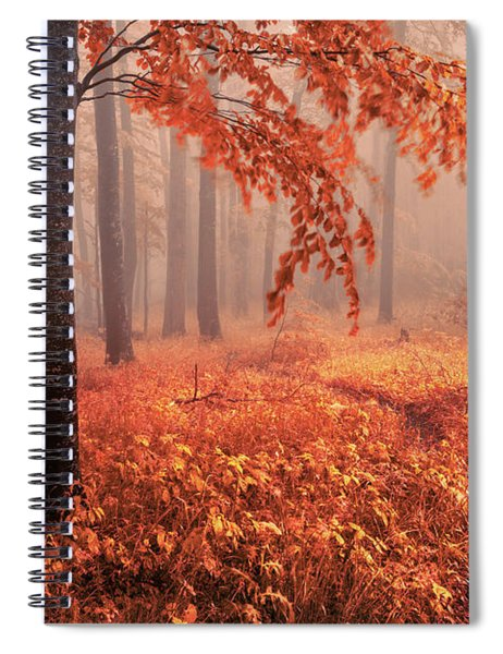 Orange Wood Spiral Notebook