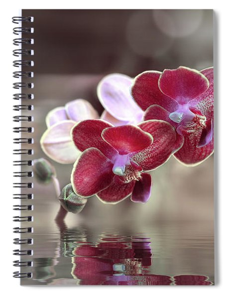 Orchid Reflection Spiral Notebook