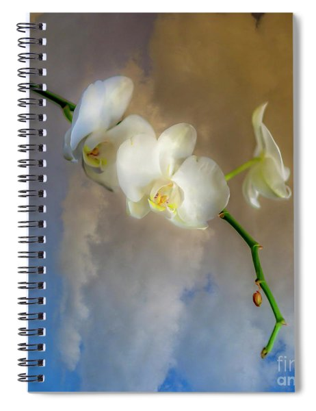 Orchid With Clouds Spiral Notebook