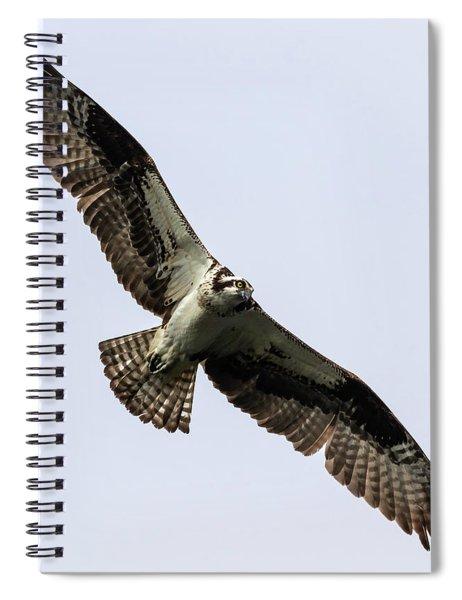 Osprey 2019-8 Spiral Notebook