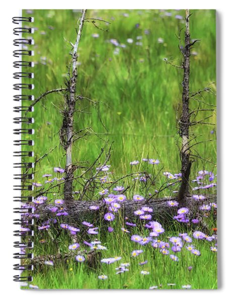 Overcome With Beauty Spiral Notebook by Rick Furmanek
