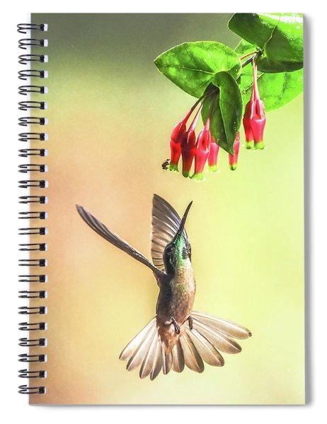 Overhead Spiral Notebook