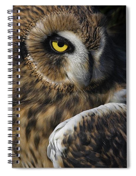 Owl Strikes A Pose Spiral Notebook