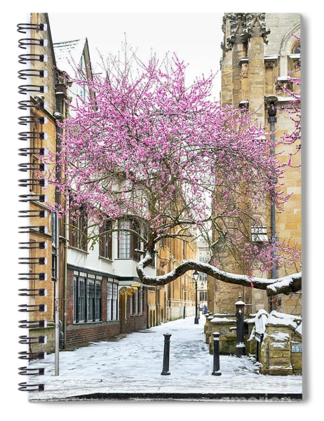 Oxford Almond Tree Blossom In The Snow Spiral Notebook