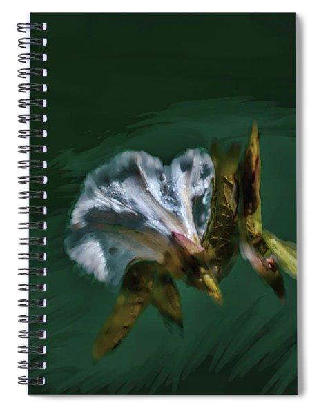 Painted Bindweed #i2 Spiral Notebook