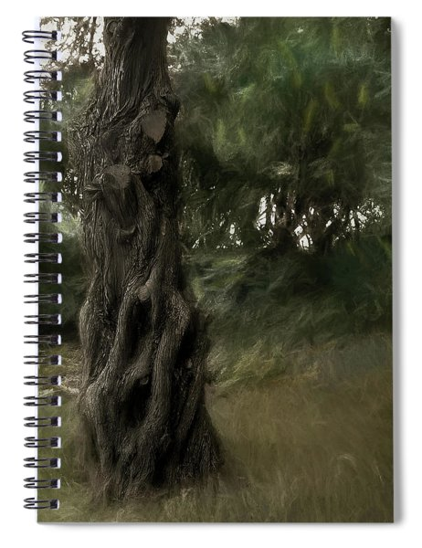 Painted Wind In The Cedar Spiral Notebook