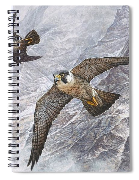 Spiral Notebook featuring the painting Pair Of Peregrine Falcons In Flight by Alan M Hunt