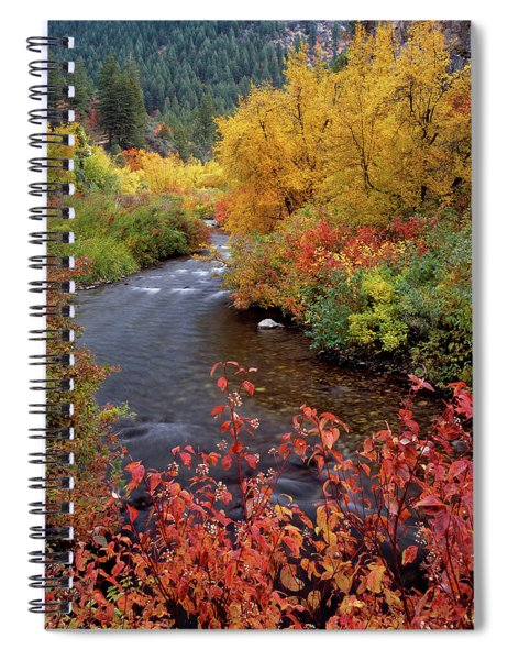 Palisades Creek Canyon Autumn Spiral Notebook