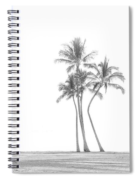 Palm Tree Cluster In Black And White Spiral Notebook