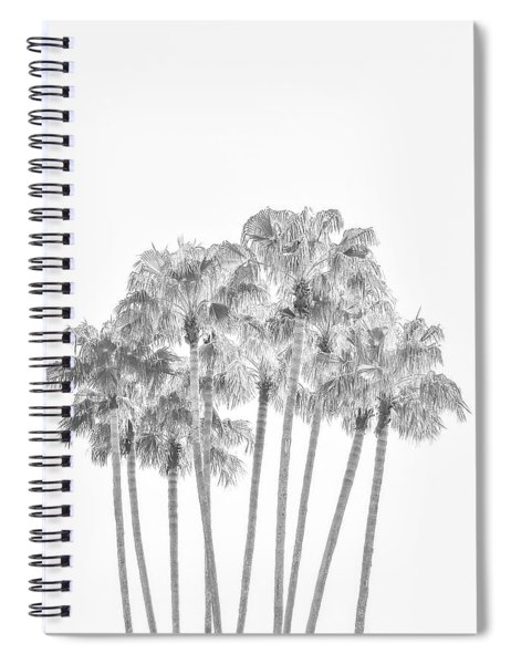 Palm Tree Grove In Black And White Spiral Notebook