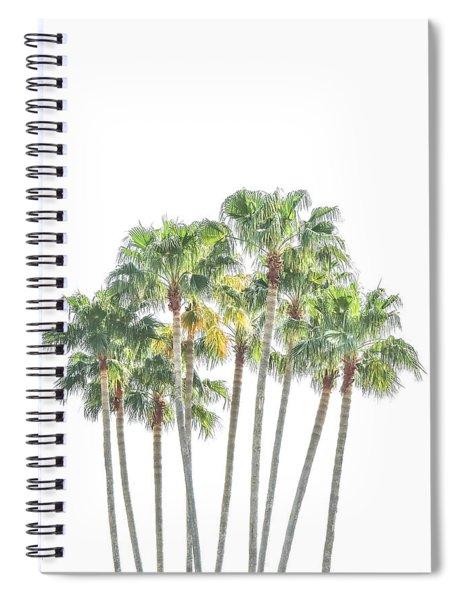 Palm Tree Grove Spiral Notebook