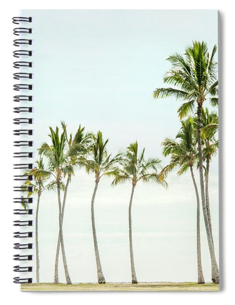 Palm Tree Horizon In Color Spiral Notebook