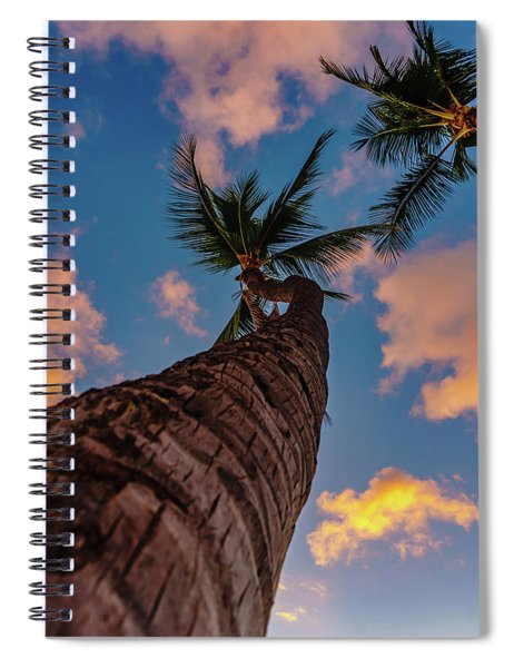Palm Upward Spiral Notebook