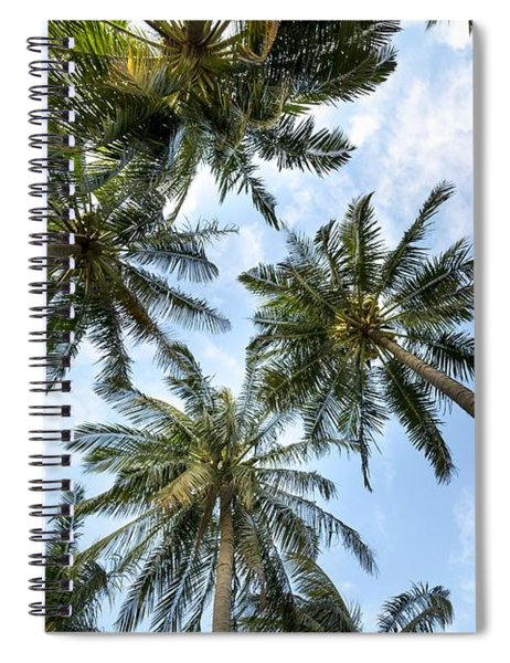 Palms  Beach Spiral Notebook