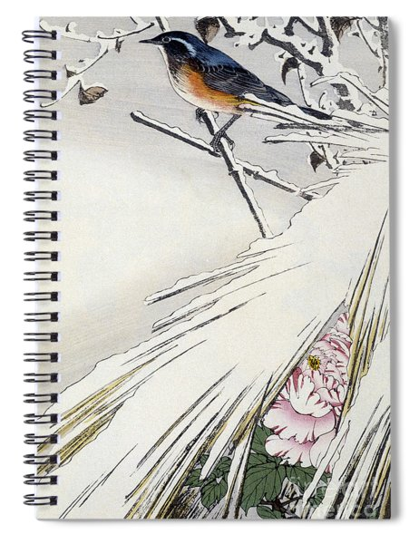 Passereau In The Cold Of Winter Spiral Notebook