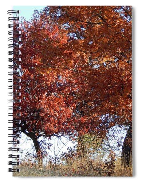 Passing Autumn Spiral Notebook
