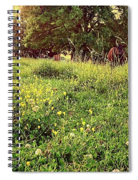 Peaceful Pastoral Perspective Spiral Notebook