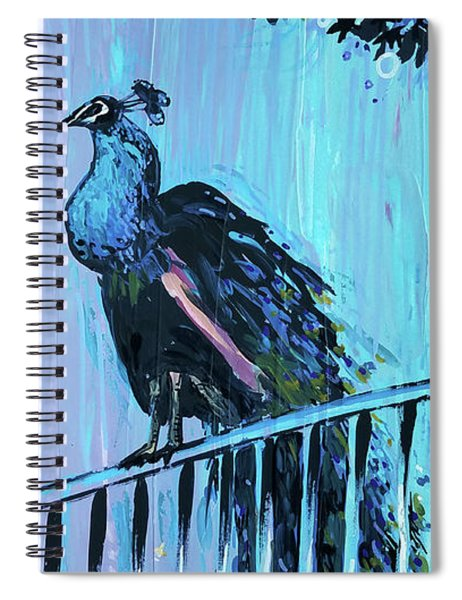 Peacock On A Fence Spiral Notebook