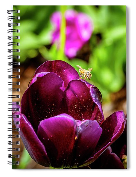 Peering Into The Deep Spiral Notebook