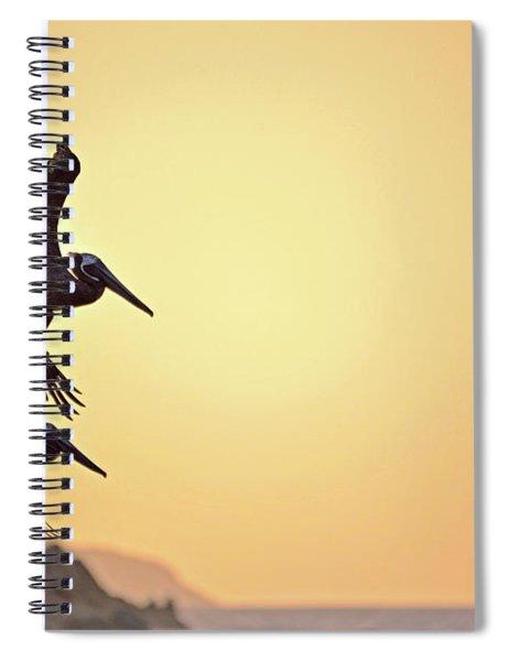 Pelican Down Spiral Notebook