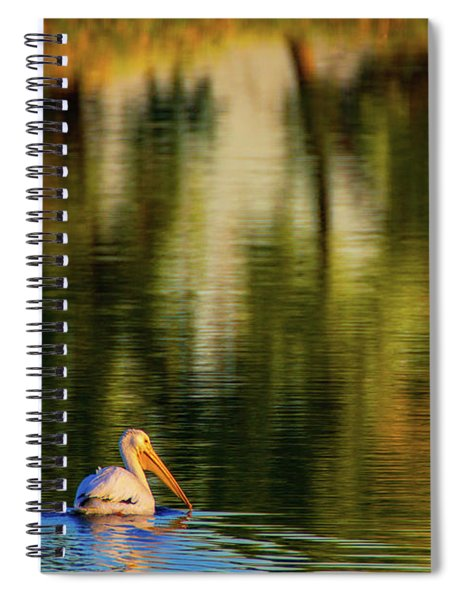 Spiral Notebook featuring the photograph Pelican In Sunlight by John De Bord