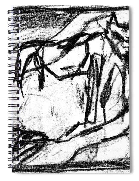 Pencil Squares Black Canine B Spiral Notebook