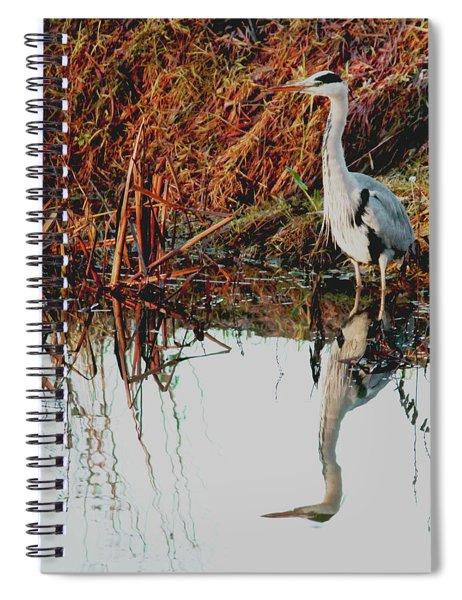 Pensive Heron Spiral Notebook