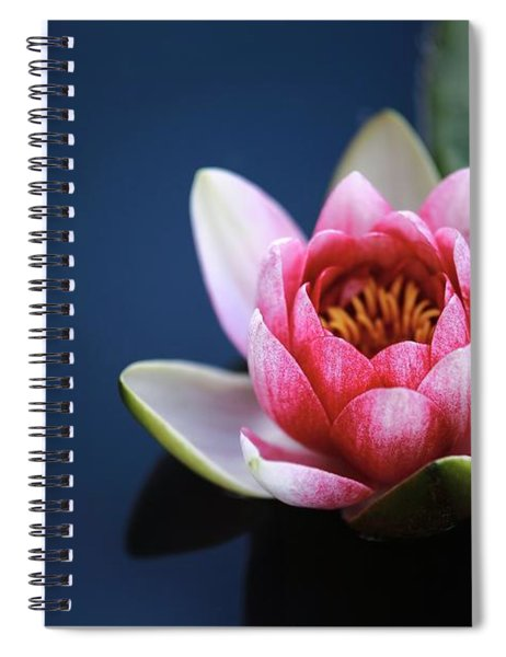 Perfect Lotus Spiral Notebook