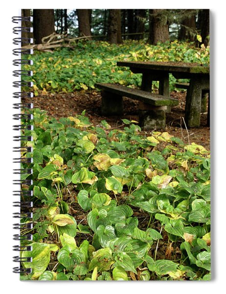 Picnic  Table In The Forest  Spiral Notebook
