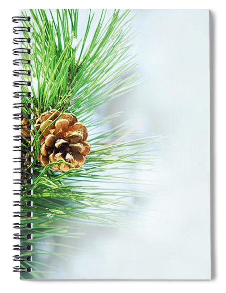 Pine Cone On Fir Tree Brunch Under Snow Spiral Notebook