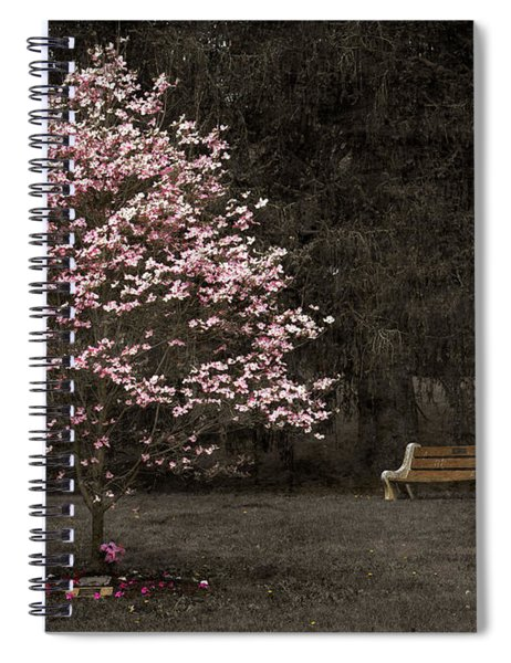 Pink Dogwood Tree And A Bench Spiral Notebook