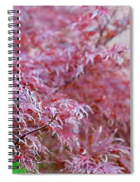 Pink Fairy Tale Spiral Notebook