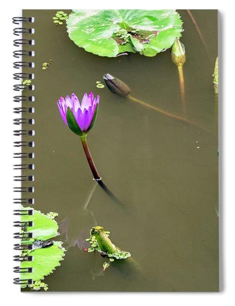 Pink Lily Vietnam Style Spiral Notebook
