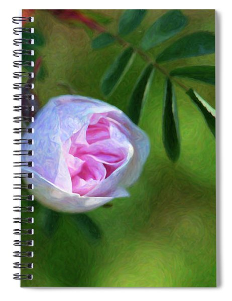Pink Rose - Romantic Encounter - By Omaste Witkowski Spiral Notebook