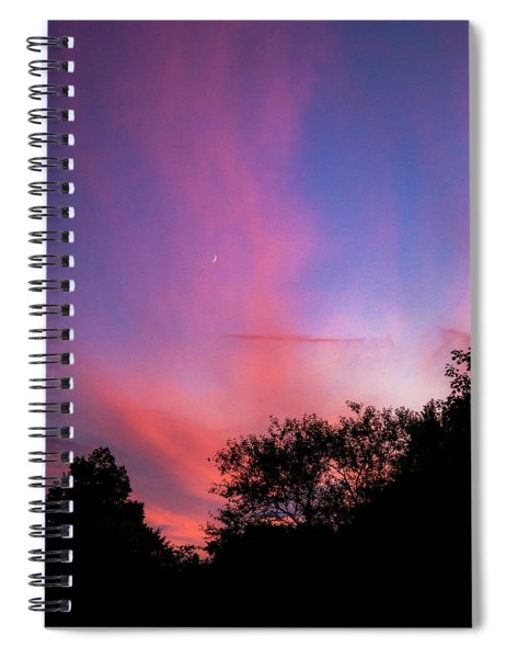 Pink Whisps Spiral Notebook