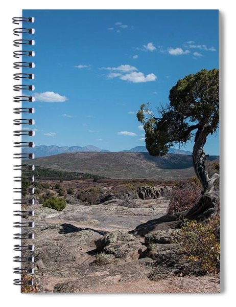 Pinyon Pine With North Rim In Background Black Canyon Of The Gunnison Spiral Notebook