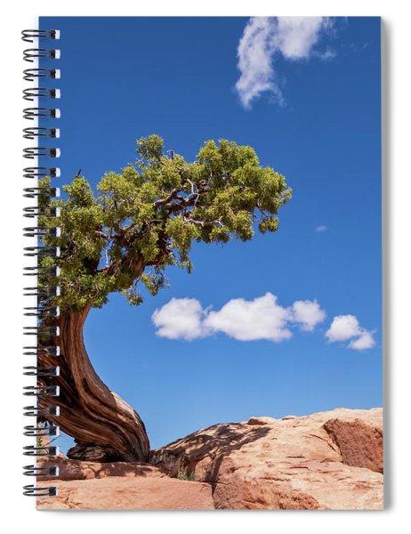 Playful Juniper Spiral Notebook