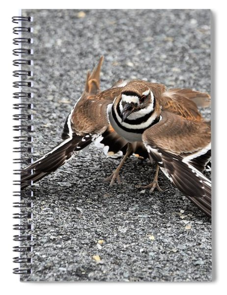 Playing Broken Wing Spiral Notebook