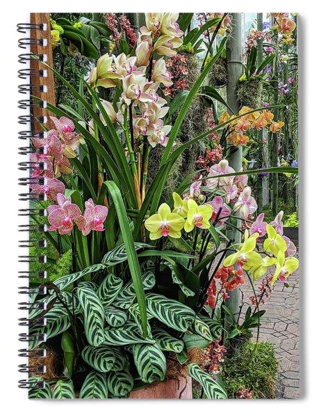 Plentiful Orchids Spiral Notebook