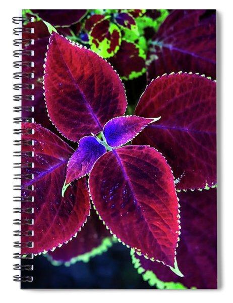 Plum Tones Spiral Notebook