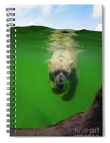 Polar Bear Underwater Spiral Notebook