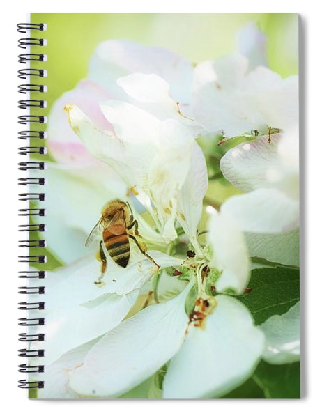 Pollen Gathering Spiral Notebook