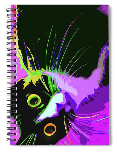 Pop Cat Dotty Spiral Notebook
