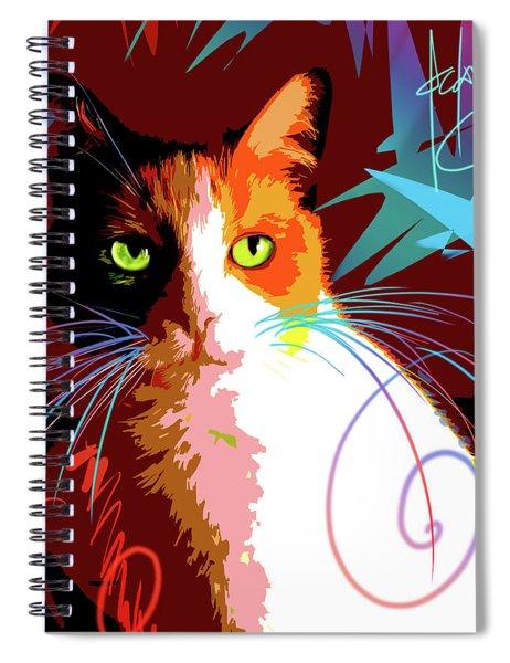pOpCat Chubby Spiral Notebook