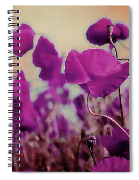 Poppies In Sunlight Spiral Notebook