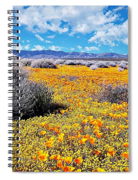 Poppy Patch - California Spiral Notebook