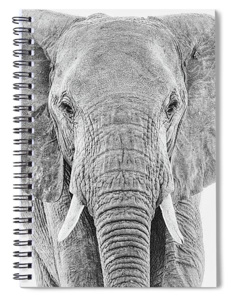 Portrait Of An African Elephant Bull In Monochrome Spiral Notebook