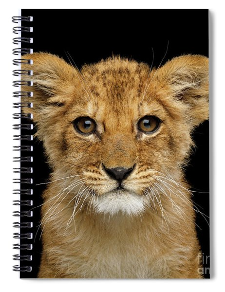 Portrait Of Little Lion Spiral Notebook